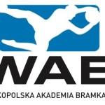 Wielkopolska Akademia Bramkarska w Poznaniu